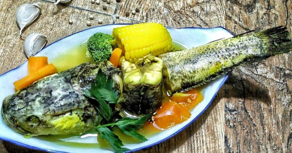 Manfaat Ikan Gabus Bagi Kesehatan Kordanews